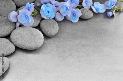 kwiaty-i-kamienie