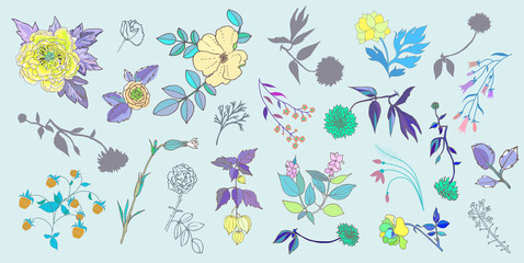 Hand Drawn vintage floral elements. Set of flowers.