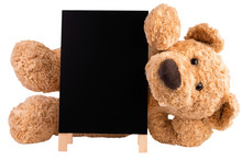 Teddy Bear With Slate Board Isolated On White Background.