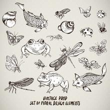 Set Of Vintage Pond Water Animals Vector Elements