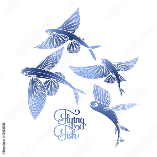 Graphic flying fish collection Wallpaper Mural
