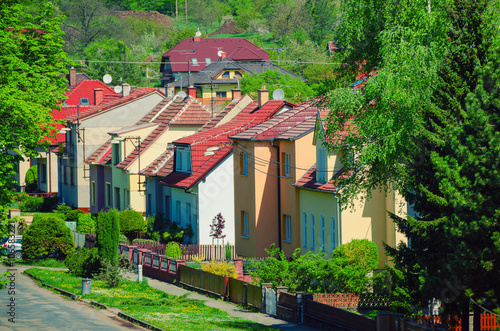 View to the idyllic small rural street of the czech village with red roof houses Poster
