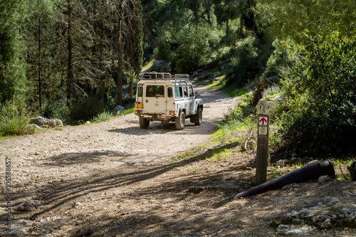 SUV rides on the country road in forest, Israel Wallpaper Mural