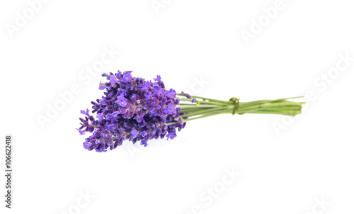 Lavender flowers isolated on white Canvas-taulu