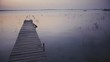 Wooden pier on lake in summer morning, Bacalar, Mexico. 4k