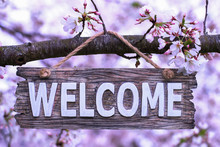 Welcome Sign  Hanging On Branch In Spring Flowering Tree