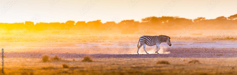 Fototapety, obrazy: Zebra Sunset Africa