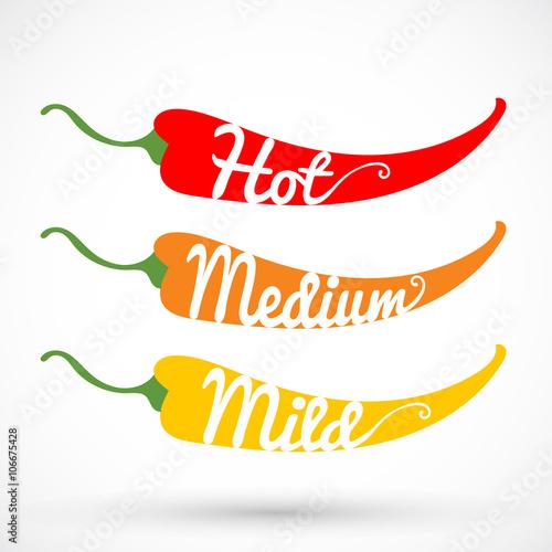 Photo  Pepper chilli vector illustration