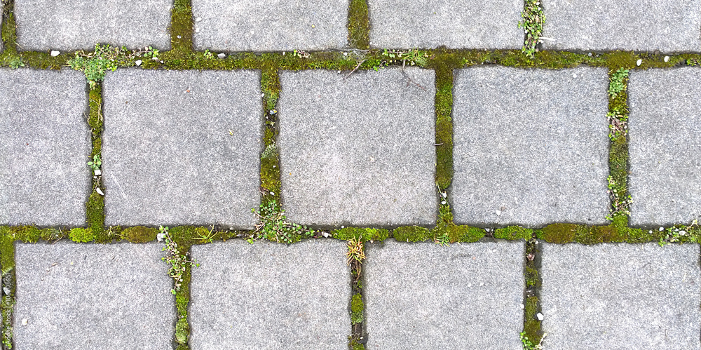Fototapety, obrazy: Square paving with grass, HD seamless texture