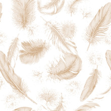 Seamless Texture With Hand Drawn Feathers.