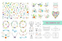 Hand Drawn Vintage Floral Elements. Set Of Flowers, Icons