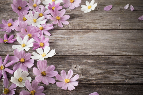Papiers peints Bois flowers on wooden background
