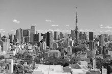 City Skyline With Tokyo Tower, Japan