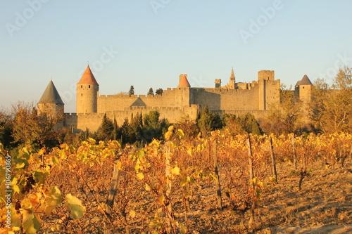 Cité de Carcassonne, vue des vignes Canvas Print