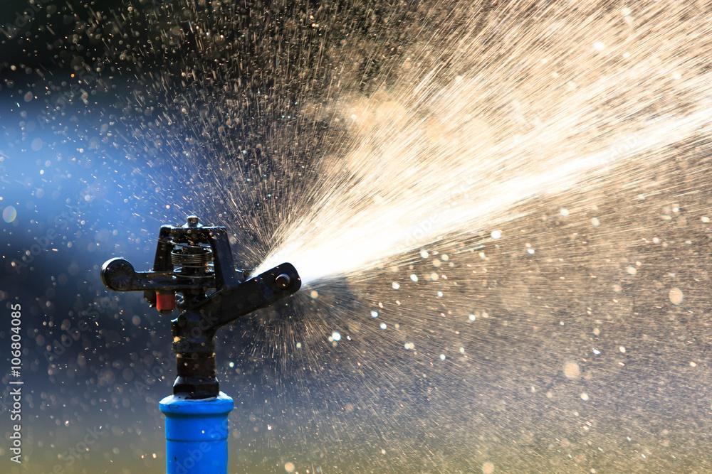 Fototapety, obrazy: Sprinkler system for water splash