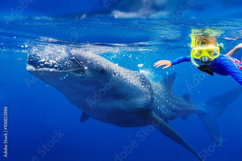 Plakat Chłopiec snorkeling z wielorybim rekinem