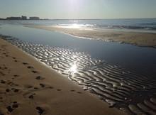 Sunset Over Chesapeake Bay Shore