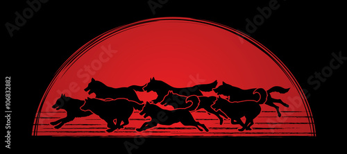 Photo Dogs running designed on sunlight background graphic vector.
