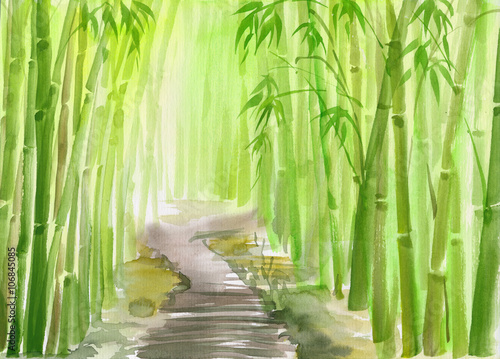 Poster de jardin Bambou Single path alley through green bamboo forest original watercolor painting.