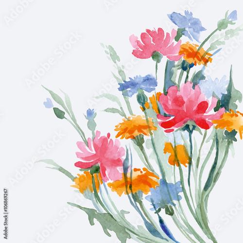akwarela-kolorowych-letnich-dzikich-kwiatow