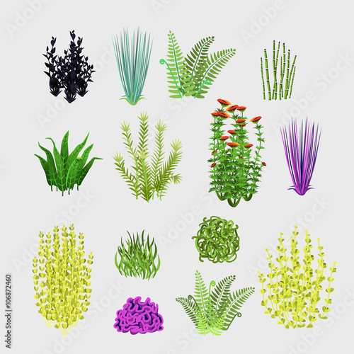 Obraz na plátně  Varieties of plants, big set 14 icons