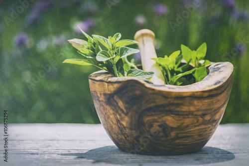 Cuadros en Lienzo Hierbas - Las hierbas frescas en un mortero (filtrado)