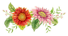 Bouquet With Watercolor Gerbera Flower. Hand Drawn Illustration
