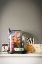 Collection Of Objects From Vacations And Travel With Glass Dome