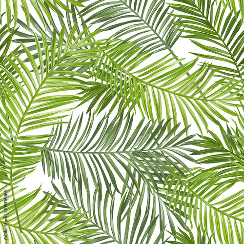 Wall Murals Tropical Leaves Seamless Pattern. Tropical Palm Leaves Background. Vector Background