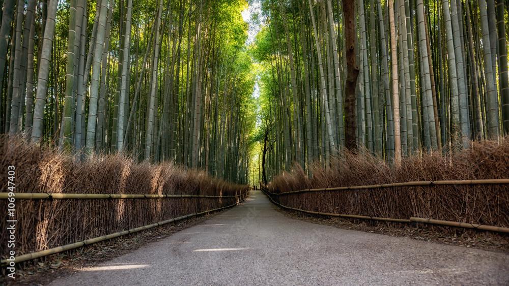 Ścieżka do bambusowego lasu, Arashiyama, Kyoto, Japonia <span>plik: #106947403 | autor: Chanwit</span>