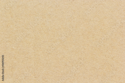 Brown cardboard background or texture Canvas