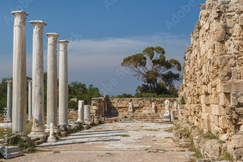 Poster Ruine Ruins of the ancient Roman city of Salamis, North Cyprus