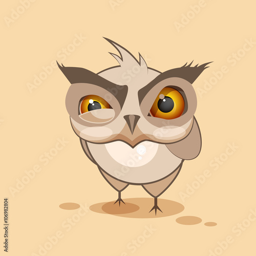 Fotografie, Tablou  Owl is angry
