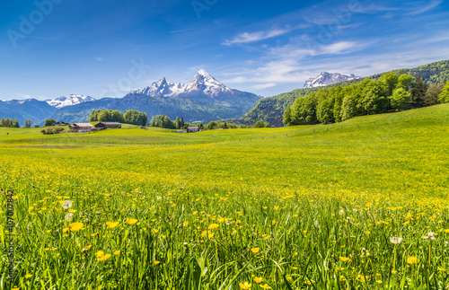 Foto op Canvas Pistache Idyllic landscape in the Alps with blooming meadows and mountain tops