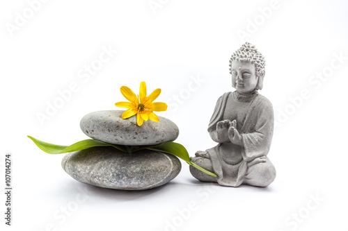 Fotografija  Stones whit flower and Buddha