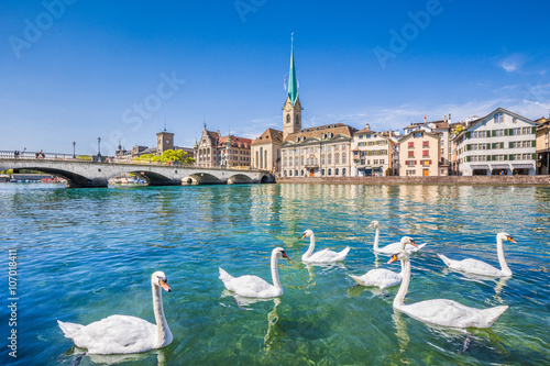 Cadres-photo bureau Cygne Zürich city center with swans on Limmat river, Switzerland