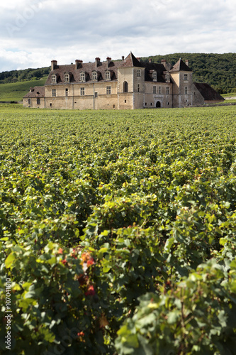 Papiers peints Vignoble French vineyard chateau Burgundy, France