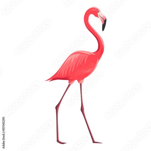 Fotografie, Obraz  Vector Illustration of a Flamingo