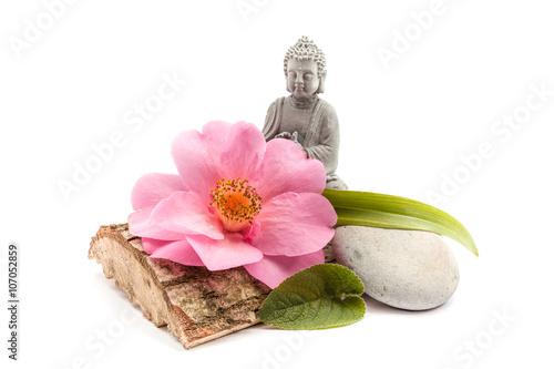 Stones and trunk whit flower and Buddha Slika na platnu