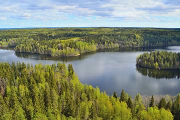 Fototapeta Finland in spring