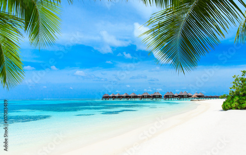 Poster Tropical plage beach in Maldives