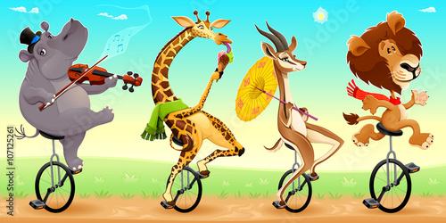 Staande foto Kinderkamer Funny wild animals on unicycles