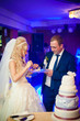 canvas print picture - beautiful gorgeous blonde bride and stylish groom cutting colorf