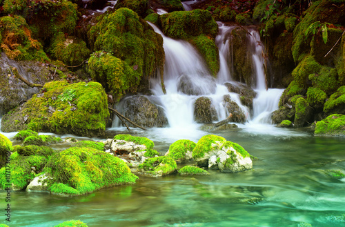 Foto op Canvas Watervallen Mountain stream among the mossy stones