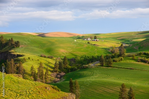 Poster Hill Farm in the rolling hills farmland. Palouse Hills in Washington, United State of America.
