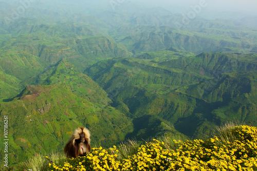 View of ethiopian  Siemen Mountains