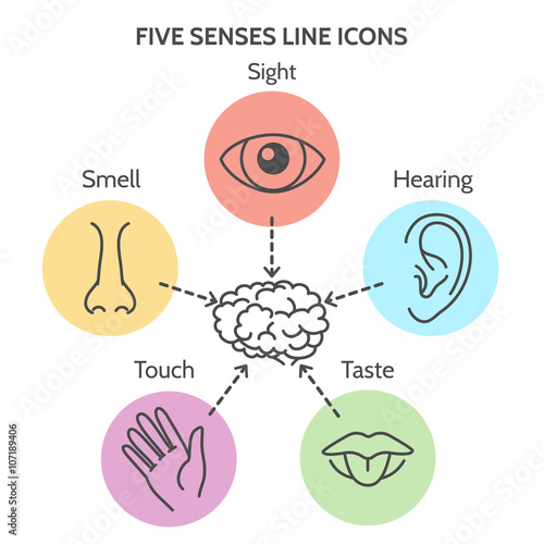 Foto  Fünf Sinne Linie Symbole