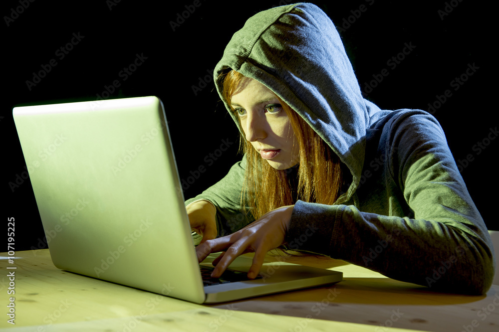 an essay on hackers phreakers and computer crimes System why do they do it, well lets go to a book and see 'avid young computer hackers in their preteens and teens are frequently involved in computer crimes that take the form of trespassing, invasion of privacy, or.