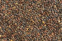 Raw Lentils Background