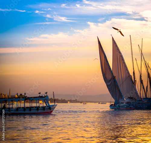 Tuinposter Egypte Feluccas at sunset - traditional sail vessel on Nile river in Egypt.